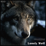 Lonely_Wolf